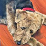 Jo Morris Painting Dog Custom