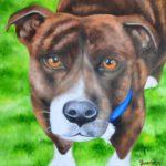 Jo Morris Paintings Dog Cushion