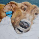 Jo Morris Paintings Greyhound