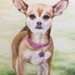 Jo Morris Paintings Dog Roxy